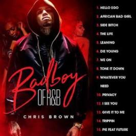 chris brown mixtape torrent